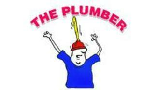 The plumber for plumbing repairs in palmdale ca b d for Sewer liners pros and cons
